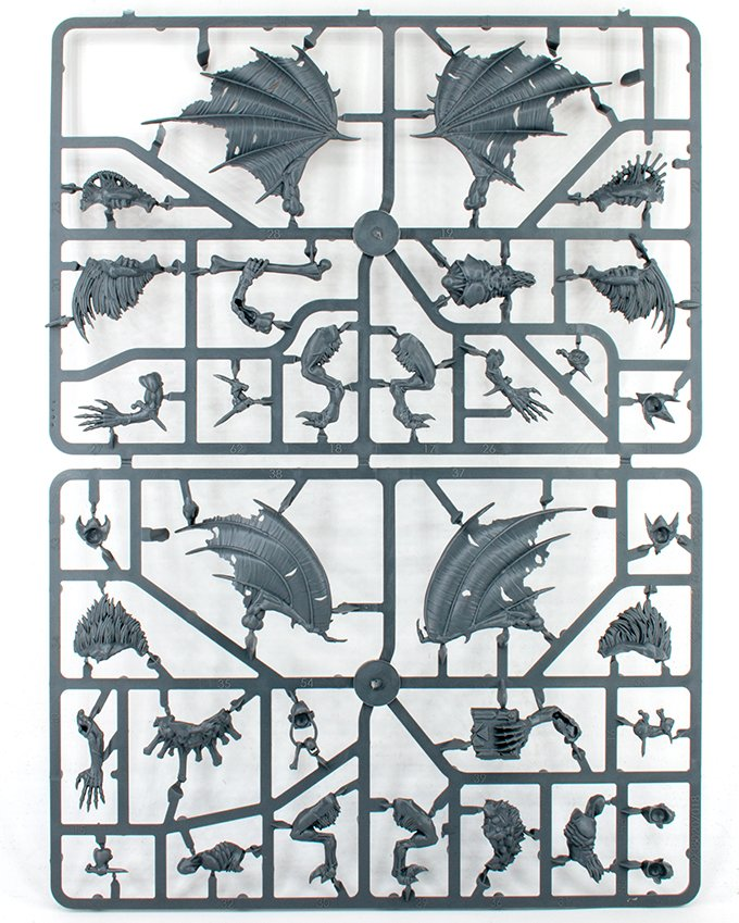 Mortal Realms - Premium Kit 1 - Crypt Flayers Sprue B.