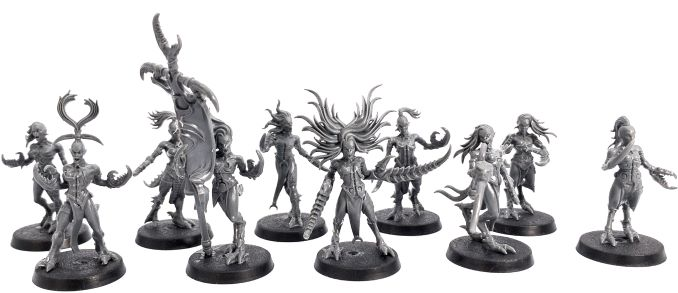 Shadow and Pain Box Set Review Daemonettes