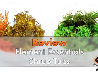Element Essentials - Shrub Tubs - En vedette